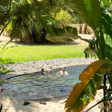 Rafiki Safari Lodge: A Costa Rican Rainforest Resort With a Little Touch of Africa
