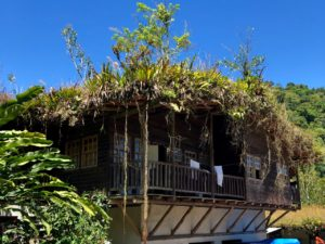 Living roof ecolodge