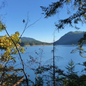Olympic Peninsula Fun: Staircase, Hoodsport and Lake Cushman