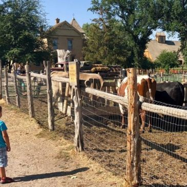 Wheeler Historic Farm with Kids: Free Fun!