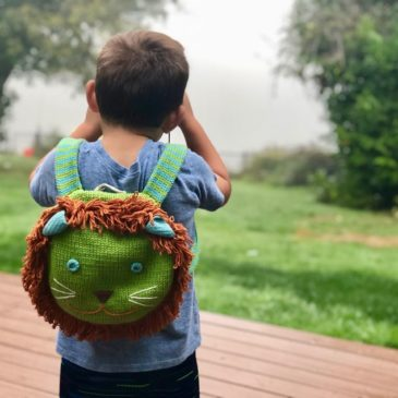 How to Prepare for an International Trip with Kids