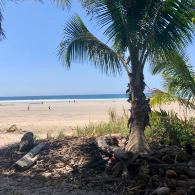 Playa Hermosa on the Nicoya Peninsula is a wide, flat, perfect beach, shaded at the edges by palm trees and boasting waves for every level of surfer.
