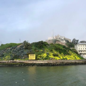 Visiting Alcatraz With Kids