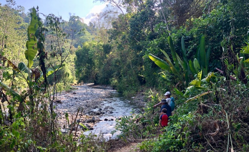 Costa Rica Gold Panning Tour