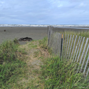 Things to do in Seabrook, Washington
