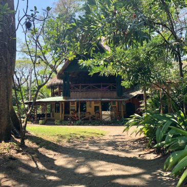 Osa Peninsula Lodging in Costa Rica: Ecolodges, Tents, Hotels and More