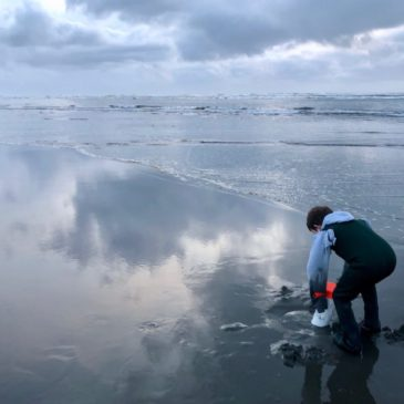 How to Go Clamming in Washington State: A Beginner's Guide