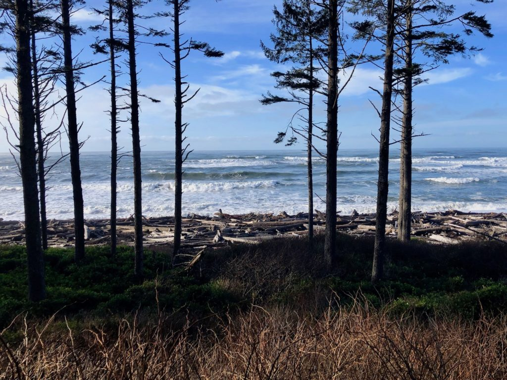 Olympic Peninsula Washington