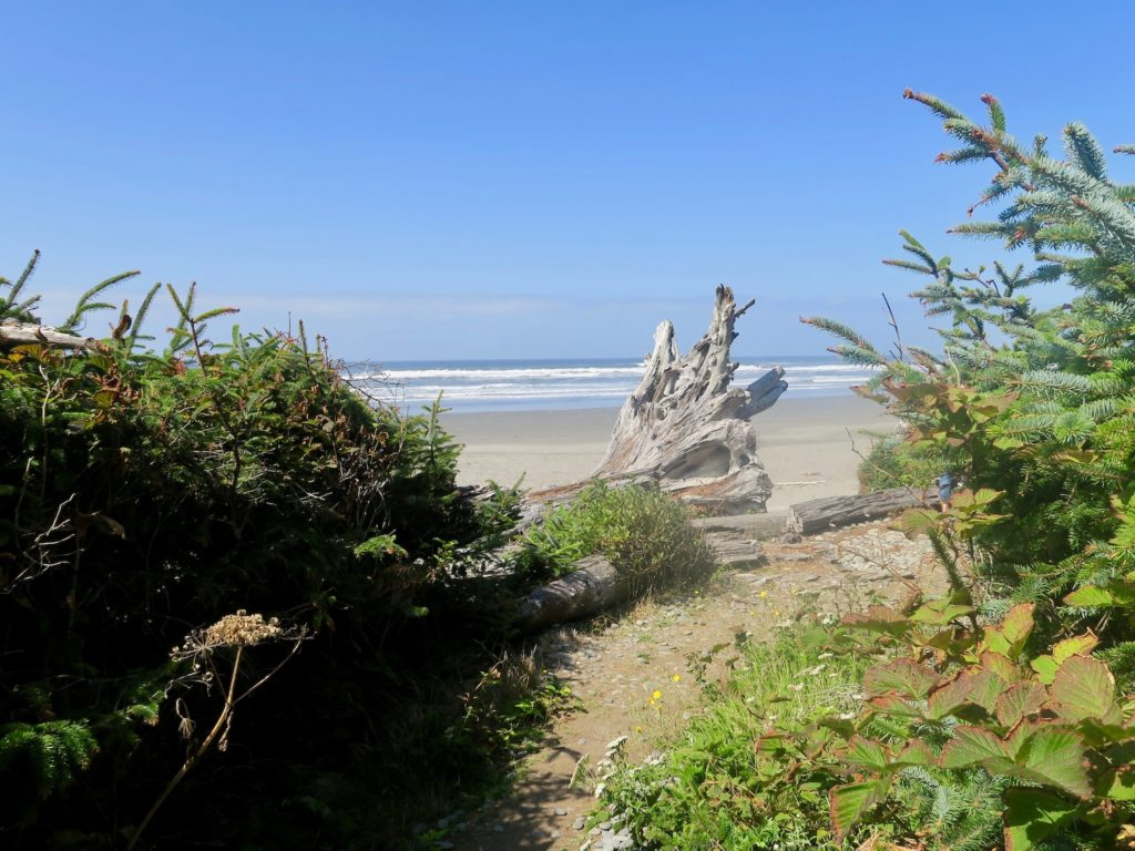 Beach 2 Olympic Peninsula