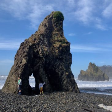 The Best Beaches in Olympic National Park