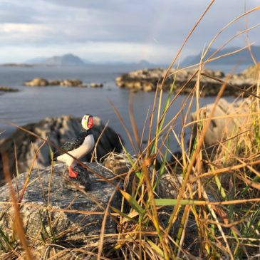 Visiting Runde, the Bird Island of Norway, with Kids